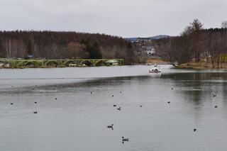 池、ボート.JPG